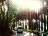 Road trip nara japan