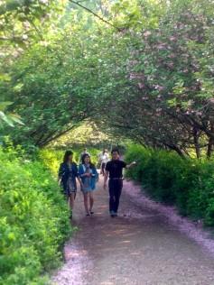 Yumi, Vora, and Appa strolling along