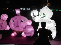 Epic time at the Jinju Lantern Festival with Ron, Alex, Casey, and our new Jinju member, Adam