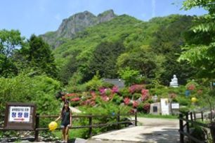 Baekyangsa, South Korea. Guarantee there will be no crowds