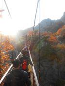 Daedunsan autumn foliage