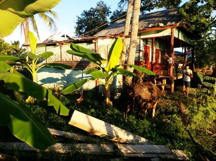 Bungalow in Don Det, Laos