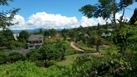 Scenery in the Pai countryside