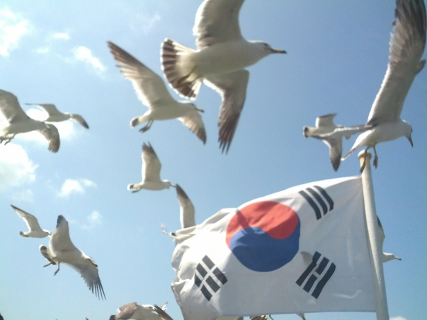 ganghwa island korea ferry birds