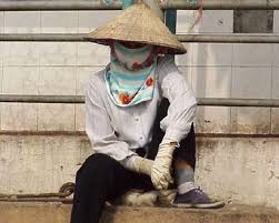 vietnam face mask