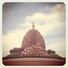 Durian roundabout, Kampot Cambodia