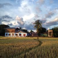 Don Det Laos