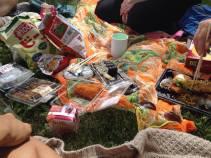 Picnic in Meijo Park