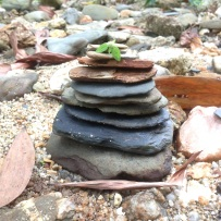 Made a rock pile near the creek