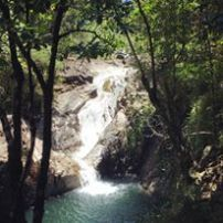 Finch Hatton Gorge Eungella National Park