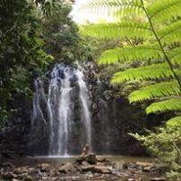 Waterfall in Atherton Tablelands