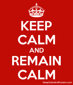 5895840_keep_calm_and_remain_calm
